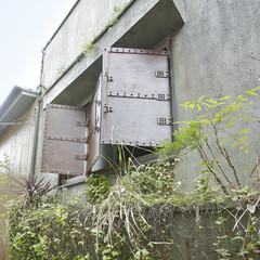エイジング/グリーン/大阪/植栽/緑/鉄扉