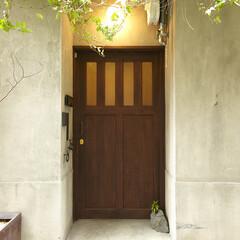 ivy/potted plants/wood door/エイジング/エントランス/グリーン/... 玄関 玄関はひっそりと控えめに上品で、且…