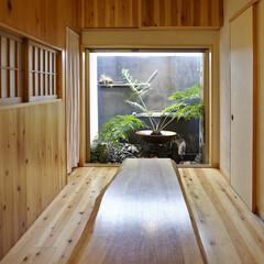 グリーン/ダイニング/リビング/中庭/坪庭/大阪/... リビングは約7帖と広くはありませんが、奥…