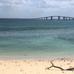 南の島/沖縄/宮古島/旅行/トラベル/暮らし/... 秋晴れな宮古島。 遠くに見える橋は伊良部…