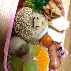 遠足/お弁当 (1枚目)