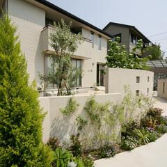 ESTINA/エスティナ/ガーデン/外構/エクステリア/庭/... 高低差をつけた壁とあふれる植栽で圧迫感を…