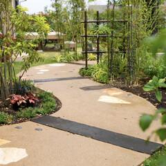ESTINA/エスティナ/ガーデン/外構/エクステリア/庭/... 連続したカーブが織り成すアプローチ