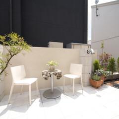 ESTINA/エスティナ/ガーデン/外構/エクステリア/庭/... 座ったときの目隠しにもなる高さに設計され…
