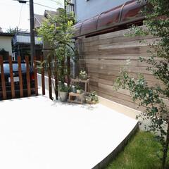 ESTINA/エスティナ/ガーデン/外構/エクステリア/庭/... ほどよく視線を遮る縦スリットと、お庭の背…