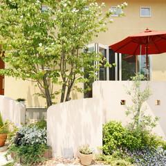 エスティナ/ガーデン/外構/エクステリア/庭/植物/... やさしさと温もり+太陽と風=南欧イメージ