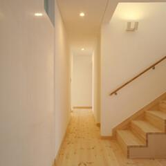 白/壁仕上げ/漆喰/廊下 内壁の仕上げはすべて消石灰クリームですが…