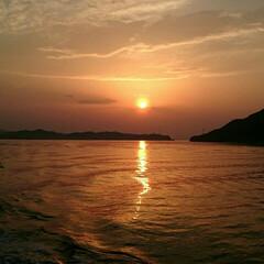 景色/夕日/おでかけ 先月の写真。  フェリーから見た夕日が綺…