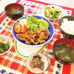 夜ごはん/ドイツ/料理/アンナのキッチン/豚肉/生姜焼き/... ドイツで作る夜ごはんです♡ ★豚肉の生姜…(1枚目)