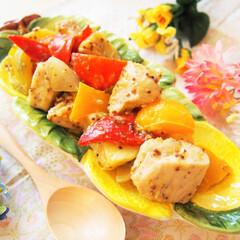 鶏肉/作り置き/常備菜/料理研究家/アンナのキッチン/わたしのごはん 鶏むね肉とパプリカのハニーマスタードソー…