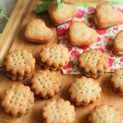 クッキー/手作りお菓子/お菓子/おやつ/抹茶/チョコレート/... 手作りサンドクッキーです。抹茶チョコとホ…