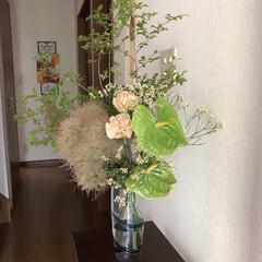 おもてなし/玄関/花のある暮らし/玄関あるある/暮らし お花生け替え✨  お店でクルクルっと包…