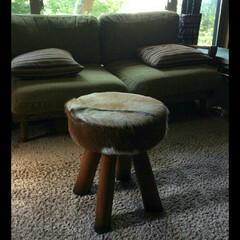 借り物/ファー/椅子/リビング この椅子自立して近所に住むお兄ちゃんの椅…