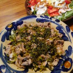 茄子/豚肉/高菜 揚げた茄子と豚小間の上に高菜漬け物の細切…