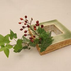 花器/flower-base/フラワーベース/一輪挿し/緑/水 平置き使用例。
