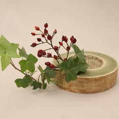 花器/flower-base/フラワーベース/リース/一輪挿し/緑 平置き例。 サイズ:外径12㎝×高さ3.…