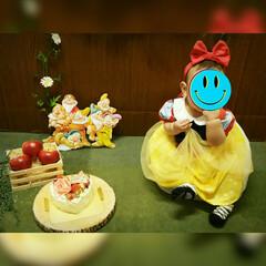 白雪姫/ハーフバースデー/子育て/子供/記念撮影/記念写真/... 2月は下の娘のハーフバースデーでした。記…(2枚目)