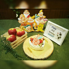 白雪姫/ハーフバースデー/子育て/子供/記念撮影/記念写真/... 2月は下の娘のハーフバースデーでした。記…(3枚目)
