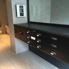 ポスト/カウンター/マンション/ダイノック/集合ポスト/新築事例/... マンションの集合ポスト 木でボックスを造…