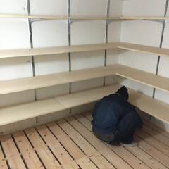 地下室/スノコ/棚/大工さん/可動棚/新築/... 建替えの際、もともとあった地下室を再利用…