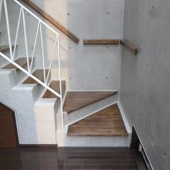 階段/手摺/RC/タモ/鉄骨/ワトコオイル/... コンクリート造の階段。 段板はタモ材をワ…