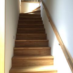 階段/廊下/手すり/木/集成材/タモ 段板、蹴込み、手摺をタモを使い加工して、…