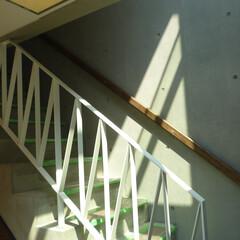 階段/手摺/リフォーム コンクリート造の階段。 段板にタモを使用…