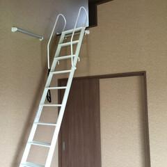 階段/ロフト/はしご 新築のロフトはしご。 パナソニック製。