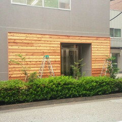レッドシダー/べベルサイディング/杉/大工/造作/外壁/... レッドシダーのラップサイディング。 看板…