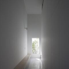 建築/住まい/玄関/ミニマルデザイン/シンプル住宅/建築家と建てる家/... ミニマルデザインの玄関