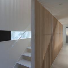 建築/住まい/建築デザイン/シンプル住宅/注文住宅 光を楽しむ廊下と階段 OUCHI-30