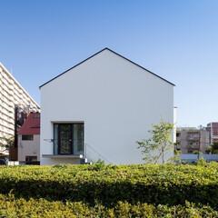 建築/住まい/建築デザイン/注文住宅/シンプル住宅 歩道の緑地帯を生かした外観 OUCHI-…