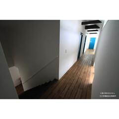 建築/住まい/建築デザイン/注文住宅/シンプル住宅 2階の客室への廊下  父島の宿アクアさん(1枚目)