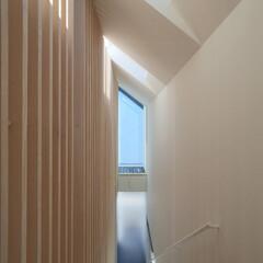 建築/住まい/建築デザイン/注文住宅/シンプル住宅 色々なところから自然光を入れ、室内にいて…