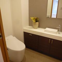 リノベーション/トイレ/マンション リノベーションで快適なトイレになりました。
