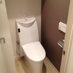 トイレ/リノベーション/マンション マンションリノベーションでトイレも新築同…