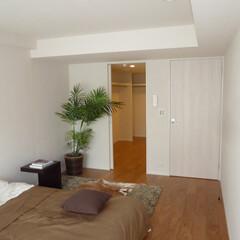 ベッドルーム/ウォークインクロゼット、マンション/戸建て/リフォーム/リノベーション/寝室 ゆとりのウォークインクロゼットのあるベッ…