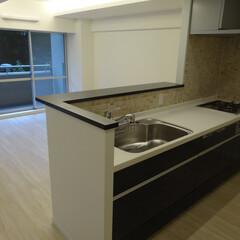マンション/リノベーション/キッチン 緑の見えるオープンキッチンにリノベ