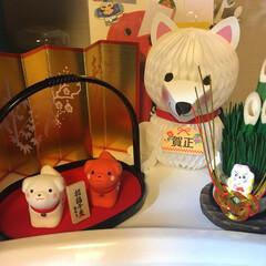 お飾り/お正月/戌年 子供の机に犬のお飾りしました(o^^o)
