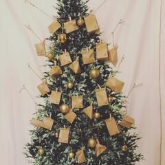 アドベントカレンダー/クリスマスツリー 我が家はまだ子どもが小さいのでツリーを飾…
