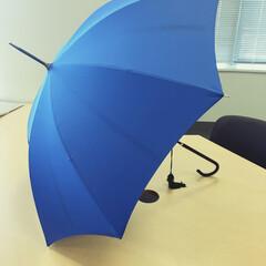 傘/梅雨2016 苦手な雨の日を乗り切る、大好きな傘! 畳…