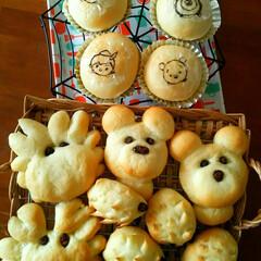 動物/パン/てごねパン/スイーツ/グルメ/フード 手ごねの動物パン 親子パン教室の試作です…