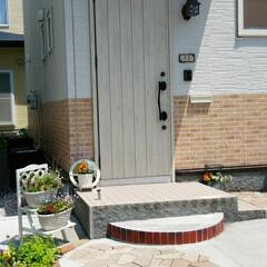 寄せ植え/小さな庭/セマカワ/花壇/住まい/玄関 玄関まわり 今日は天気も良くて 北海道も…