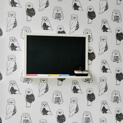 北欧/子ども部屋/キッズルーム/黒板/ふくろう/壁紙/... 息子のお部屋に黒板ボード取り付け✨フクロ…
