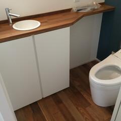 湘南スタイル トイレ手洗カウンター