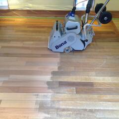 フローリング研磨/フローリング張替え ギャラリーの床をベルトサンダーで作業中。…