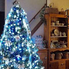 クリスマス/クリスマスツリー/カップボードDIY/ナチュラルインテリア/DIY/収納棚DIY/... リビングのクリスマスツリー 2017年も…