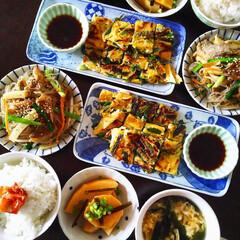 今日食べたもの/きょう何食べた? チャプチェ  チヂミ タケノコのコチュジ…