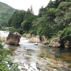 気分転換/新緑/ドライブ/川/おでかけ 久しぶりに川沿いをドライブ