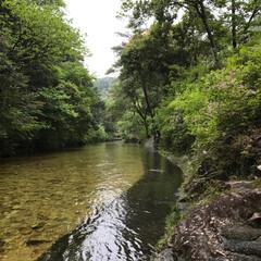 川/景色/癒し 昨日の雨が凄かったんだね    水が・・…